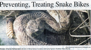 Preventing, Treating Snake Bites